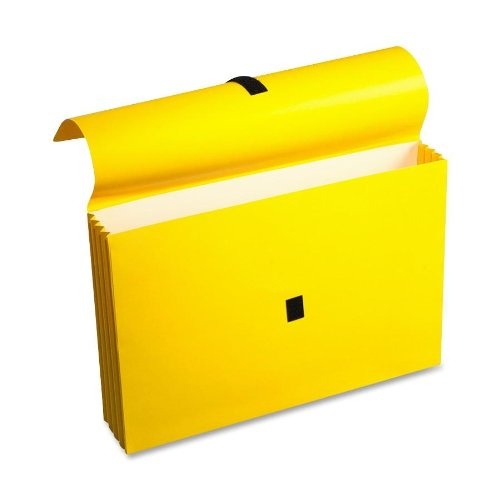 Wilson Jones ColorLife File Wallets with Velcro Grippers, 3.5 Inch Expansion, 10 x 15 Inches, Yellow, 10 Wallets Per Box (WCC722-4Y) by Wilson Jones