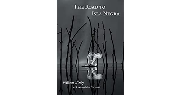 The Road to Isla Negra (English Edition) eBook: William ODaly, Galen Garwood: Amazon.com.br: Loja Kindle