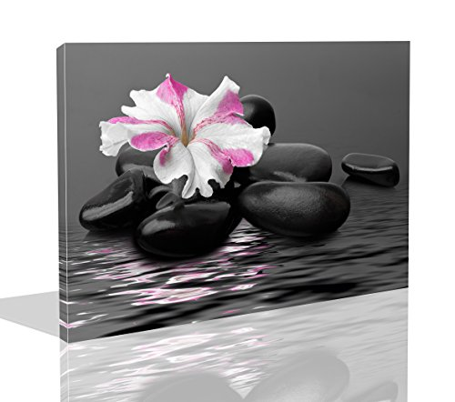 The Melody Art 1 Pce Modern Giclee Prints Framed Flower Artwork Black Stones and Pink Flower Picture Print to Photo Printed Paintings on Canvas Wall Art Decor for Home Decorations 10 by 14 inch