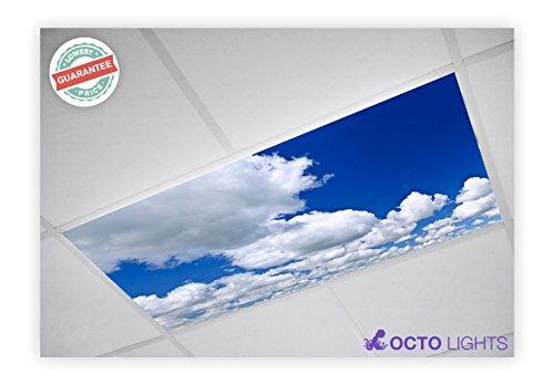 Cloud 005 2x4 Flexible Fluorescent Light Cover