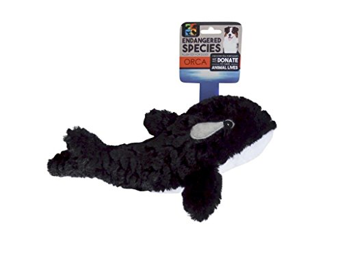 Killer Whale And Dog (Endangered Species ES14 Orca Dog)