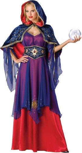 Mystical Sorceress Adult Costume - Small (Mystical Sorceress Costume)