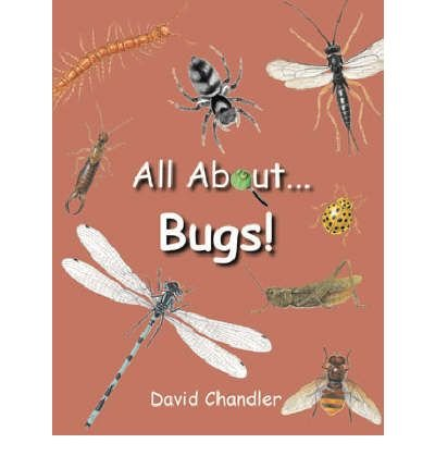 Download All About Bugs (Hardback) - Common PDF