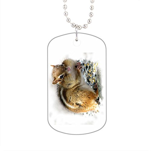 Feasting Chipmunk Dog Tag, Aluminum Pet Tag Cat Animal Tag Necklace Pendant Chain Size 1.2 X2 X0.1 Inches In Diameter