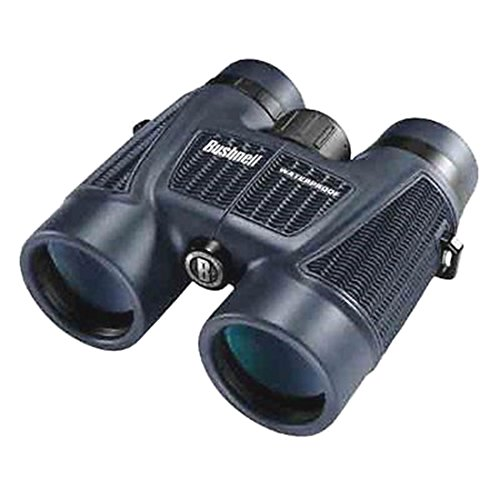 Sporting Goods-Bushnell 10x42 H2O Roof Binocular - - Coupons Ray Bans For