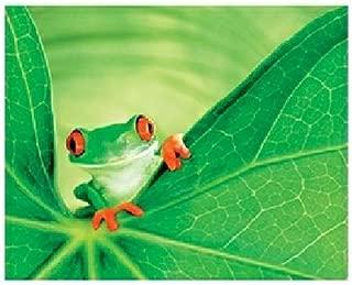 product image for Springbok Eye Spy 1500 Piece Jigsaw Puzzle