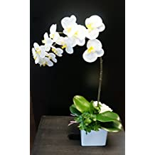Sweet Home Deco 18 Silk Artificial Phanaenopsis Orchid Arrangement w/ Black Cube Ceramic Vase Fake Flower Arrangement Decoration (White)