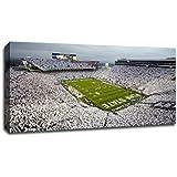 Ultramurals NCAA 40x22 Football Stadium Canvas, Penn State