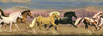 Horse Mustang Stallions Equestrian Wallpaper Wall Border…