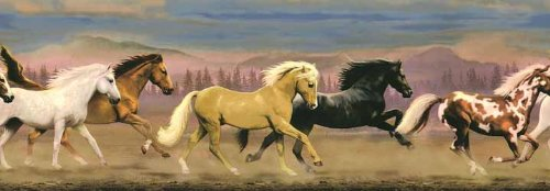 Horse Mustang Stallions Equestrian Wallpaper Wall Border... ()