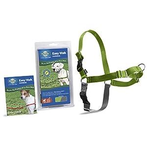 PetSafe Easy Walk Harness, Small/Medium, APPLE GREEN/GREY for Dogs