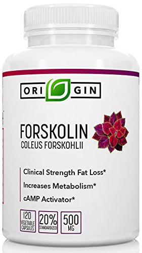 Origin Labs 100% Pure Forskolin Extract for Weight Loss. 120 Veg. Capsules 500mg per serving. Coleus Forskohlii 20% Forskolin. Fat Burner, Weight Loss Supplement for Men & (Cyclic Amp)