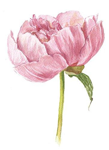 Botanical art print (8x10) - #A039 Pink Peony art print.Watercolor peony painting.Peony art.Peony artwork.Pink decor.Peony wall art.Wall decor (Wall Peony)