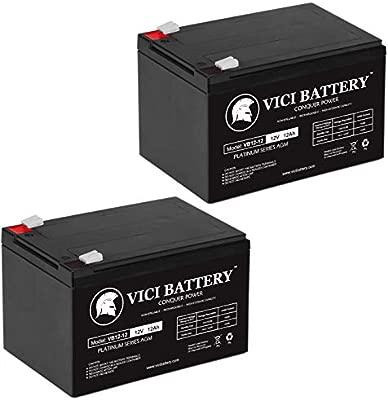 Amazon.com: VICI - Batería de repuesto para GoGo Scooter ...