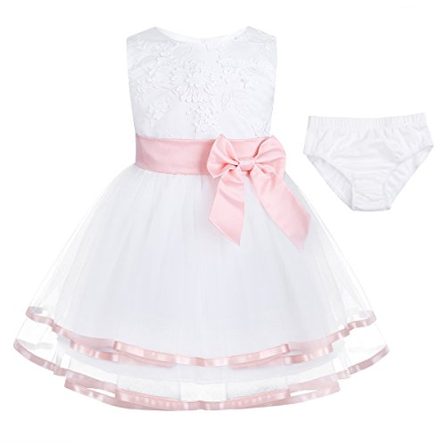 FEESHOW Baby Girls' Embroidered Flower Party Wedding Dress Christening Baptism Gown with Panty Pink 0-3 Months