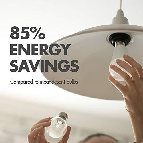 Tenergy 9W LED 60w Equivalent Light BulbA19 LED Light Bulbs,750 LumensEnergy Saving LampSoft/Warm White 2700K Lights, 16-Pack, Non-Dimmable