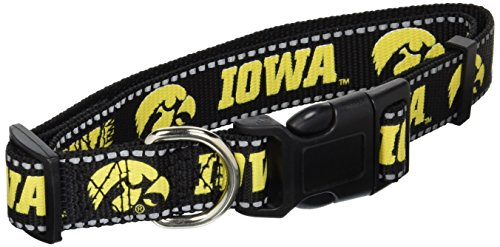 Pet Goods NCAA Iowa Hawkeyes Dog Collar, Large