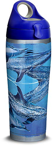 Tervis 1312222 Guy Harvey - Dolphins Stainless Steel Insulated Tumbler with Blue with Gray Lid, 24oz Water Bottle, Silver