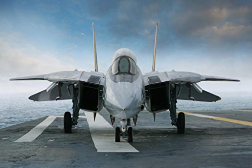 F 14 Tomcat Aircraft Fighter Jet On Carrier Deck Photo Poster 36x24 inch