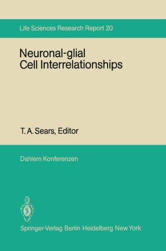 Neuronal-glial Cell Interrelationships: Report of the Dahlem Workshop on Neuronal-glial Cell Interrelationships: Ontogeny, Maintenance, Injury, ... 30 – December 5 (Dahlem Workshop Report)