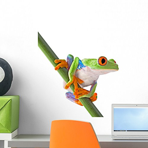 Wallmonkeys Red Eyed Tree Frog Wall Decal Peel and Stick Graphic WM325223 (18 in H x 17 in W)