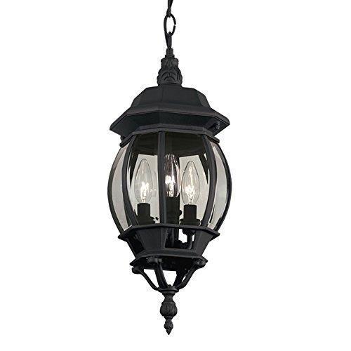 (Portfolio Black Multi-Light Traditional Clear Glass Globe Pendant)