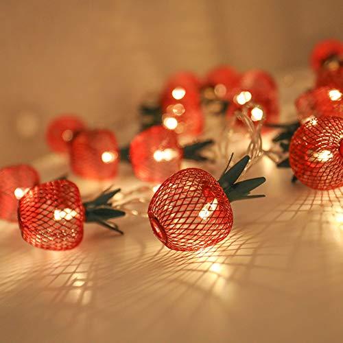 Twinkle Star 10 LED 6.6 ft Apple String Lights Battery Operated, Warm White Metal String Lights Decor for Indoor Bedroom Wedding Party Christmas
