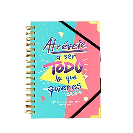 Amazon.com : 2019 2020 School Diary - Pedrita Parker ...