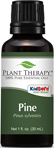 Plant Therapy Pine Essential Oil. 100% Pure, Undiluted, Therapeutic Grade. 30 ml (1 oz).