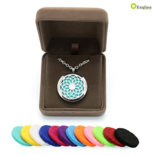 Stylish Aroma Diffuser Necklace Gift