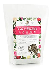 Dr. Harvey's Raw Vibrance Grain Free Foundation for Raw Diet Dog Food (3 Pounds)