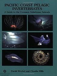 Pacific Coast Pelagic Invertebrates: A Guide to the Common Gelatinous Animals
