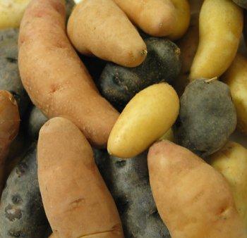 Melissa's Fingerling Potatoes, (3 - Fingerling Potatoes