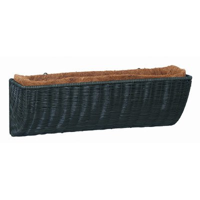 All Weather Resin Wicker Rectangular Window Box Color: Hunter Green, Size: ()