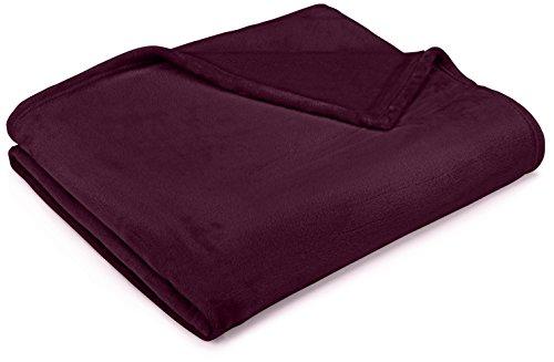Pinzon Velvet Plush Throw Blanket, 50