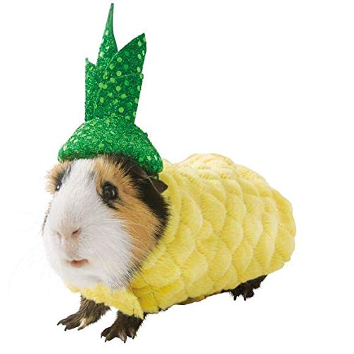 Thrills & Chills Guinea Pig Small Pet Pineapple Holiday Halloween Costume Clothes Accessory Funny Cute