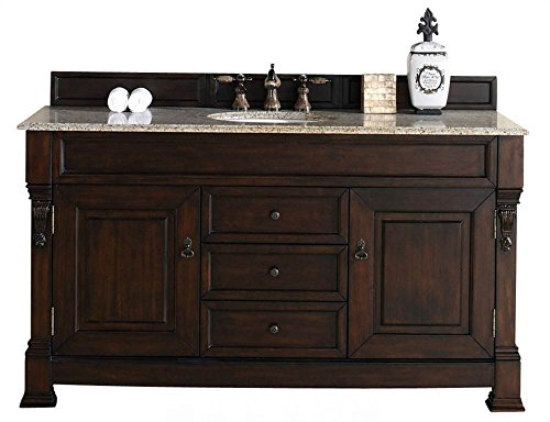 James Martin Furniture Single Cabinet Vanity, 60-Inch, Burnished Mahogany