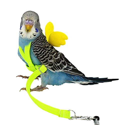 Bird Harness and Leash Flying Rope Straps Pet Parrot Outdoor Training Traction Rope Leash for Budgerigar Lovebird Cockatiel Mynah Small Bird ()