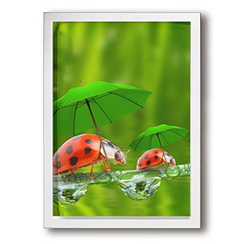 SRuhqu Canvas Wall Art Prints Humorous Ladybugs with Umbrellas and Cute Water Drops -Picture Paintings Contemporary Decorative Giclee Artwork Wall Decor-Wood Frame Ready to Hang