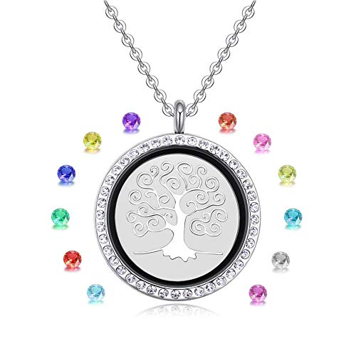 Birthstone Double Charm - Vlinsha Floating Living Memory Locket Birthstone Charm Necklace, Best Friends Silver 30mm Round Living Glass Locket with Birthstone, Glass Memory Locket Necklace, Photo Locket (144Tree-juanye)