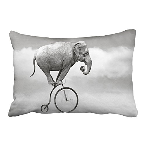 Accrocn Pillowcases funny Elephant font Bicycle sky animal fantasy art Polyester 20 x 30 Inch Rectangle With Hidden Pillow Covers Zipper Home Sofa Cushion Decorative - Vogue Style Font