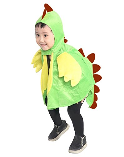 Halloween Costumes From Old Dance Costumes (Fantasy World Dragon Halloween Costume f. Babies and Toddlers, One Size, An78)