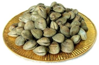 100 Live Littleneck Clams (Fresh Clam)