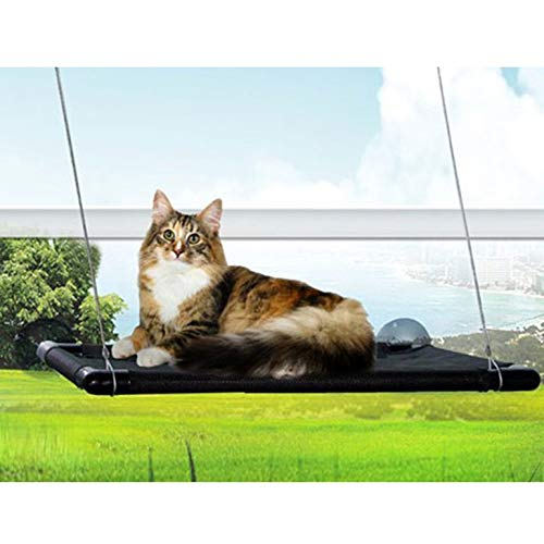 Cat Window Perch Hammock Cat Bed Kitty Sunny Seat Durable Pet Perch with Upgraded Version 4 Big Suction Cups Cat Bed Holds