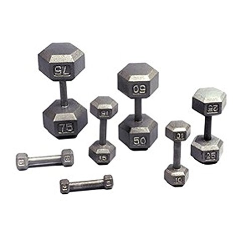USA Sports Hex Style Solid One Piece Construction Gray Baked Polyester Finish Dumbbell (5-Pound)