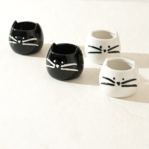 ANKIT Kitty Shot Glasses Set of 4 - Cute Funny Ceramic Shot Glass - Comes in a Beautiful Gift Box ()