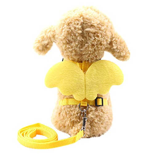 OUBAO Pet Leashes for Dogs Vest Harnesses Standard Dog Leashes,Basic Dog Collars, Harnesses Leashes Pet Cat Dog Puppy Cat Angel Wings Vest Chest Straps Belt - Kiddie Wings