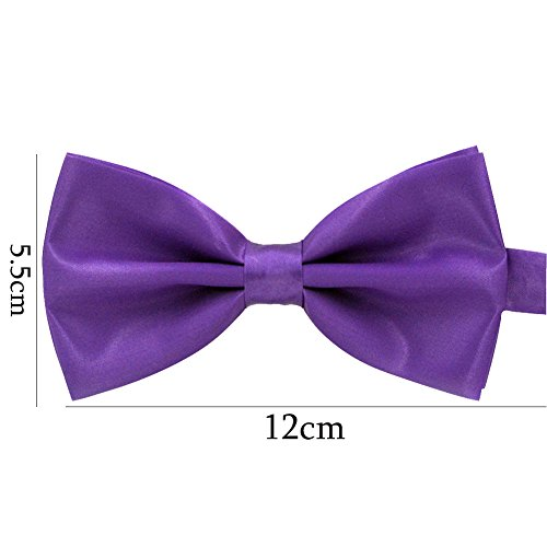 Tied Purple Pre New Bowtie Wedding Plain Polyester Pure Party Da Tie Mens Wa Bow qxwCnZ1