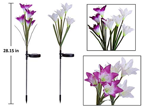 [4 Pack] Solar Lights Outdoor - Solar Garden Lights with 16 Lily Flowers | Color Changing LED Solar Stake Lights for Garden, Patio, Path, Backyard by AWJ Products (Image #4)