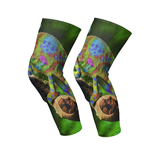 Gugize Chameleon Lizard Kids Adult Protective Knee Pads 1 Pair Compression Knee Sleeves for Volleyball Basketball Football